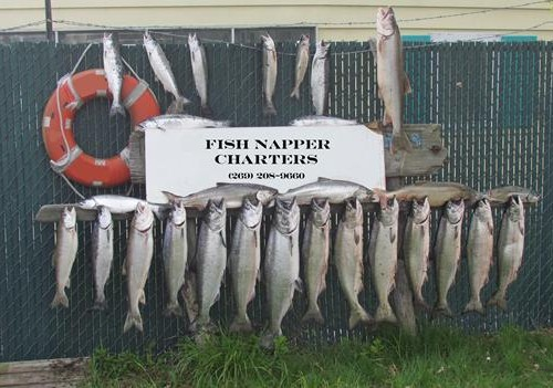 St Joseph Michigan salmon fishing
