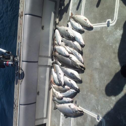 St Joseph fishing charters