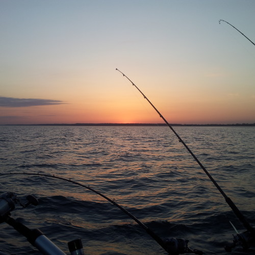 Michigan salmon fishing
